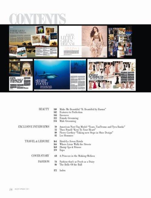 velvet magazine issue 2